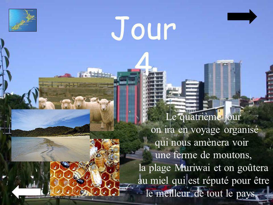 Jour 4 Le quatrième jour on ira en voyage organisé