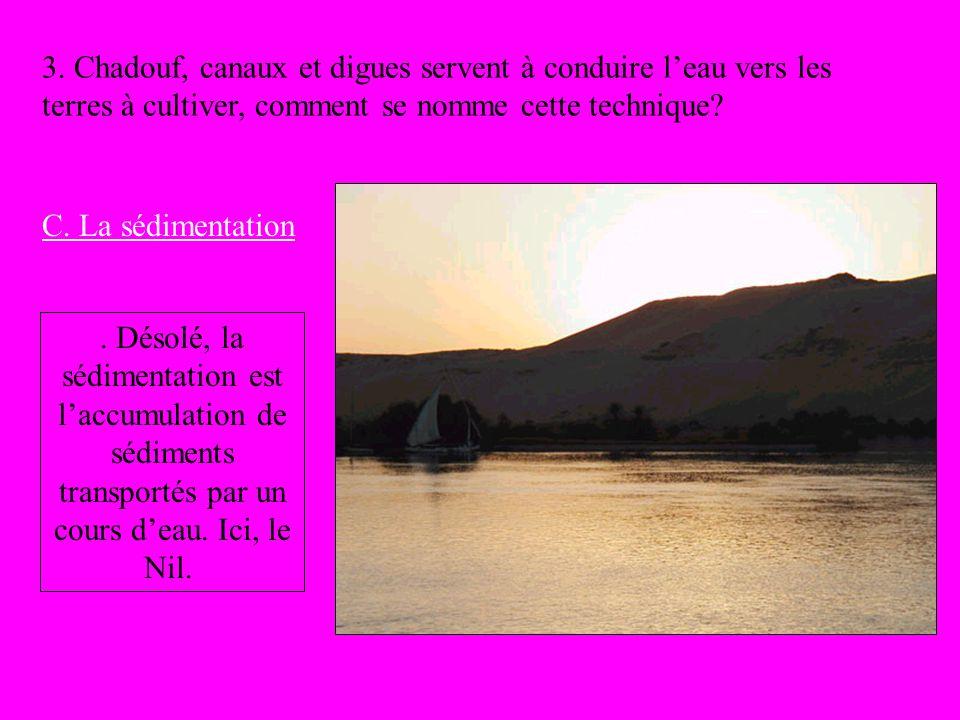 3. Chadouf, canaux et digues servent à conduire l'eau vers les terres à cultiver, comment se nomme cette technique