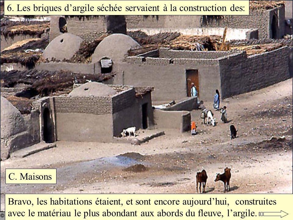 6. Les briques d'argile séchée servaient à la construction des: