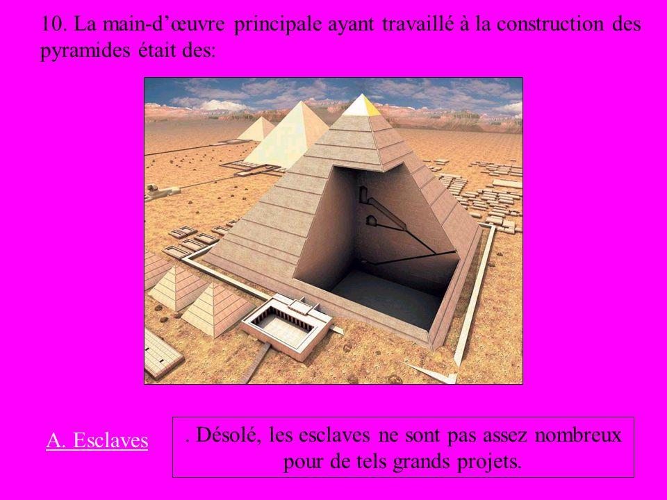 10. La main-d'œuvre principale ayant travaillé à la construction des pyramides était des: