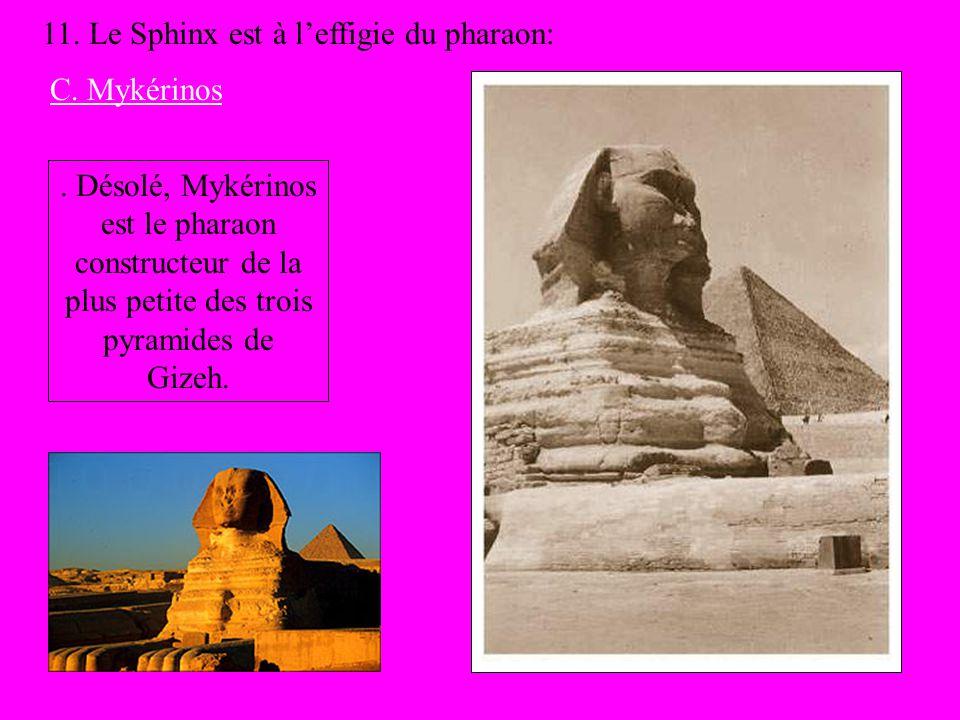 11. Le Sphinx est à l'effigie du pharaon: