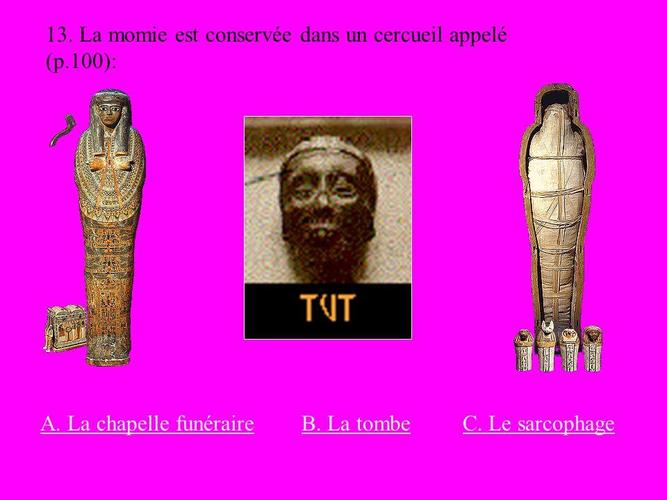 13. La momie est conservée dans un cercueil appelé (p.100):