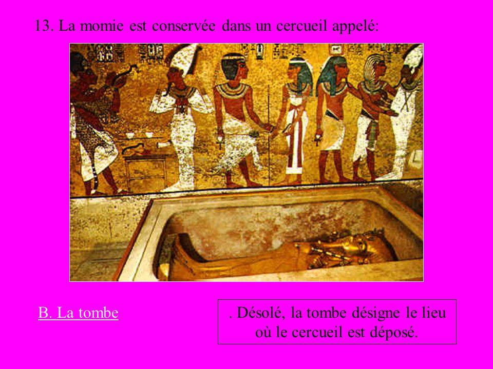 . Désolé, la tombe désigne le lieu où le cercueil est déposé.