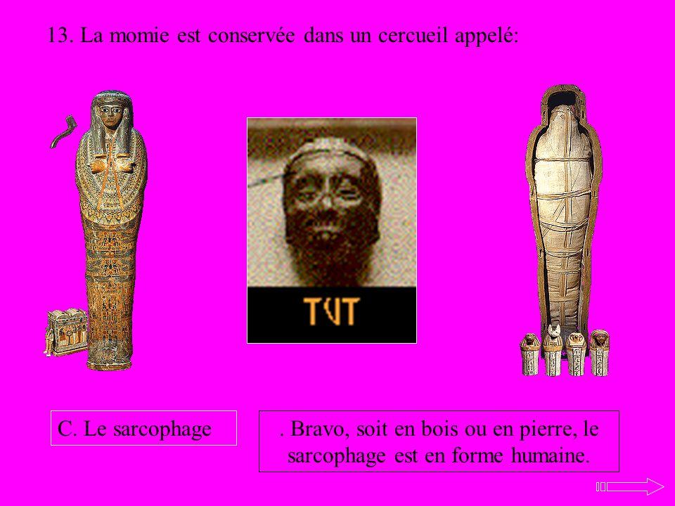 13. La momie est conservée dans un cercueil appelé: