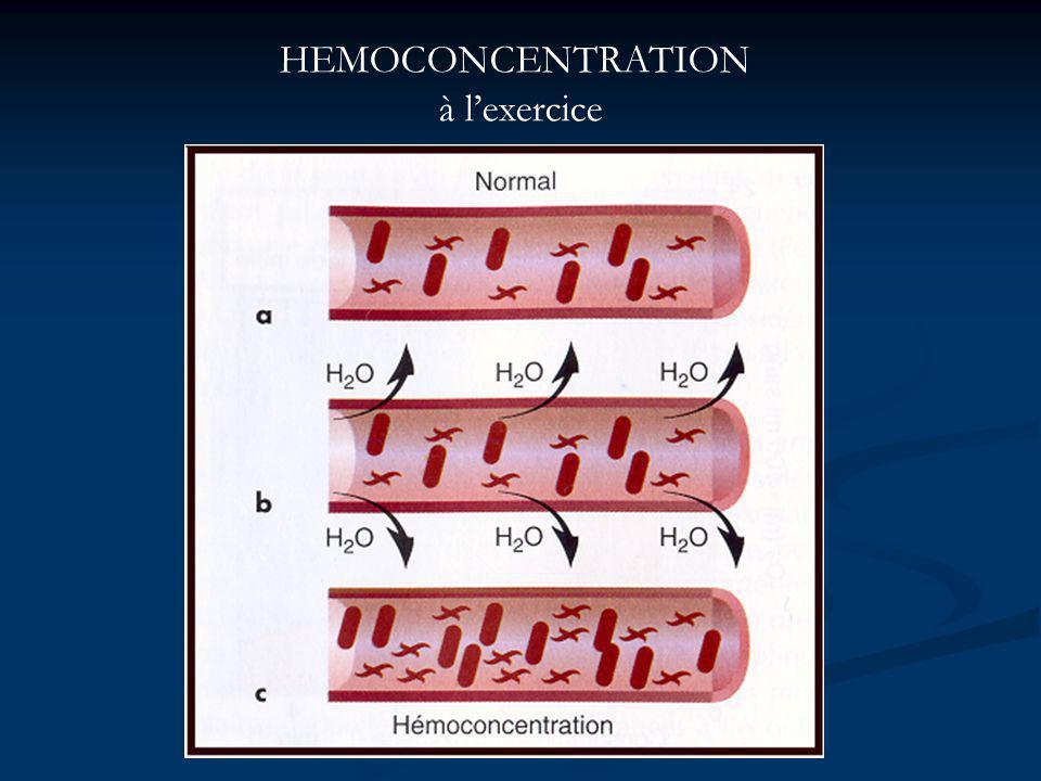 HEMOCONCENTRATION à l'exercice
