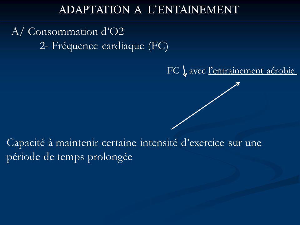 ADAPTATION A L'ENTAINEMENT