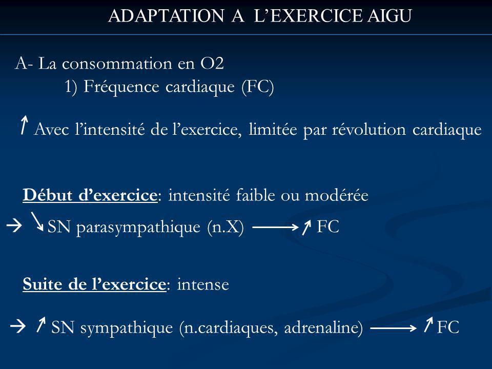 ADAPTATION A L'EXERCICE AIGU