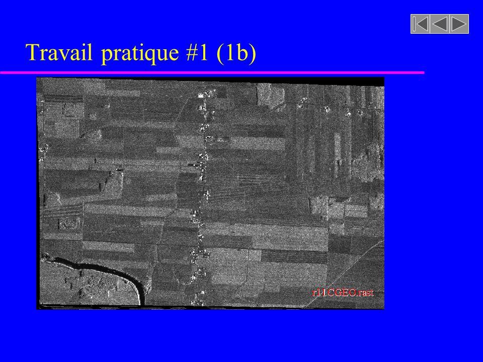 Travail pratique #1 (1b) r11 CGEO .rast