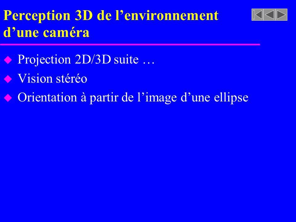 Perception 3D de l'environnement d'une caméra