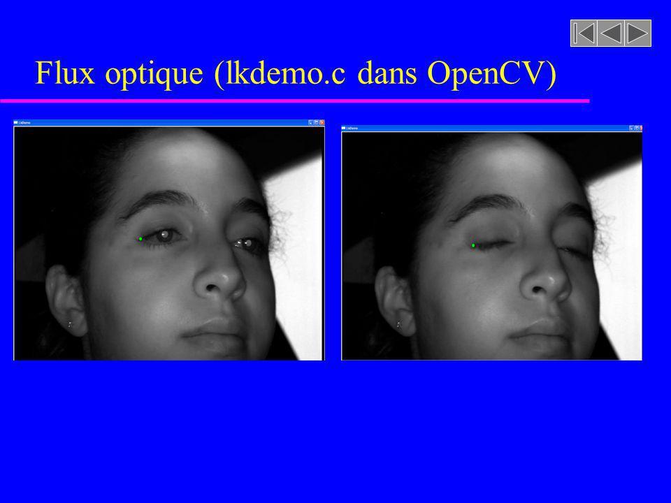 Flux optique (lkdemo.c dans OpenCV)