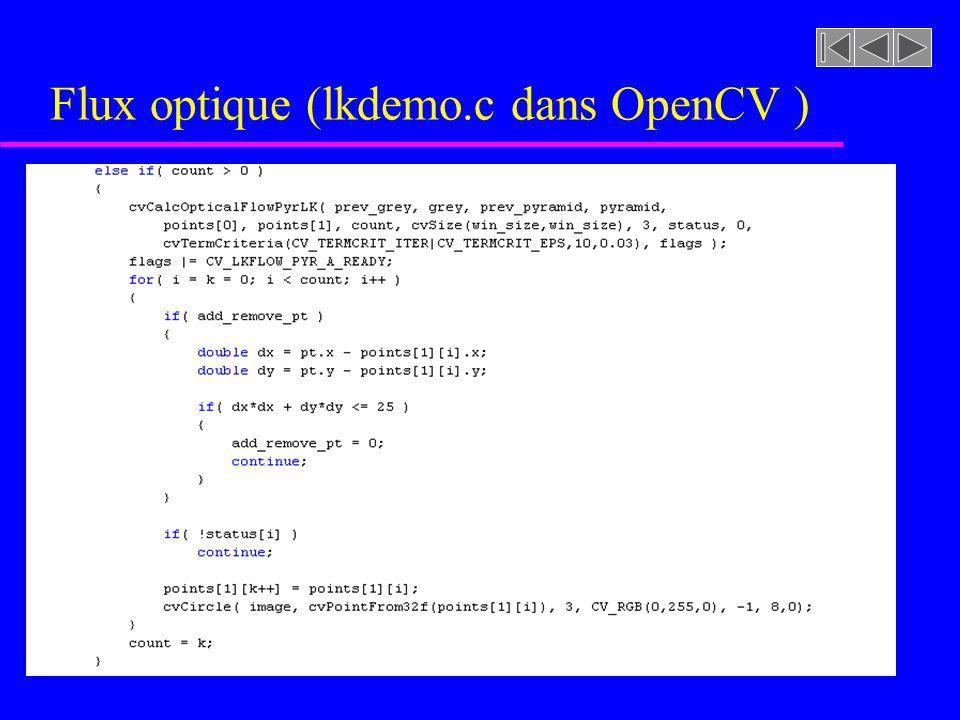 Flux optique (lkdemo.c dans OpenCV )