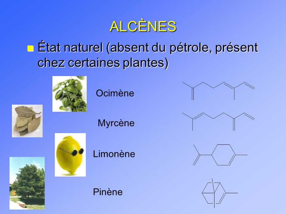 ALCÈNES État naturel (absent du pétrole, présent chez certaines plantes) Ocimène. Myrcène. Limonène.