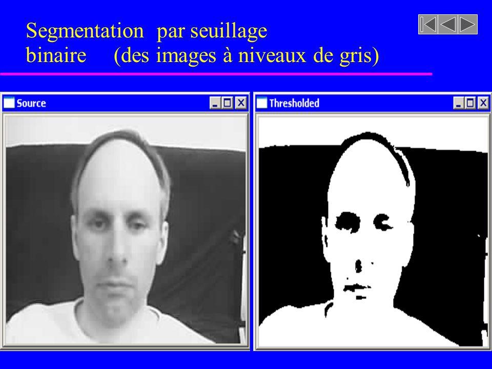 Segmentation par seuillage binaire (des images à niveaux de gris)