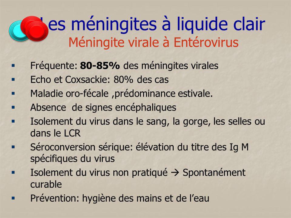 Les méningites à liquide clair