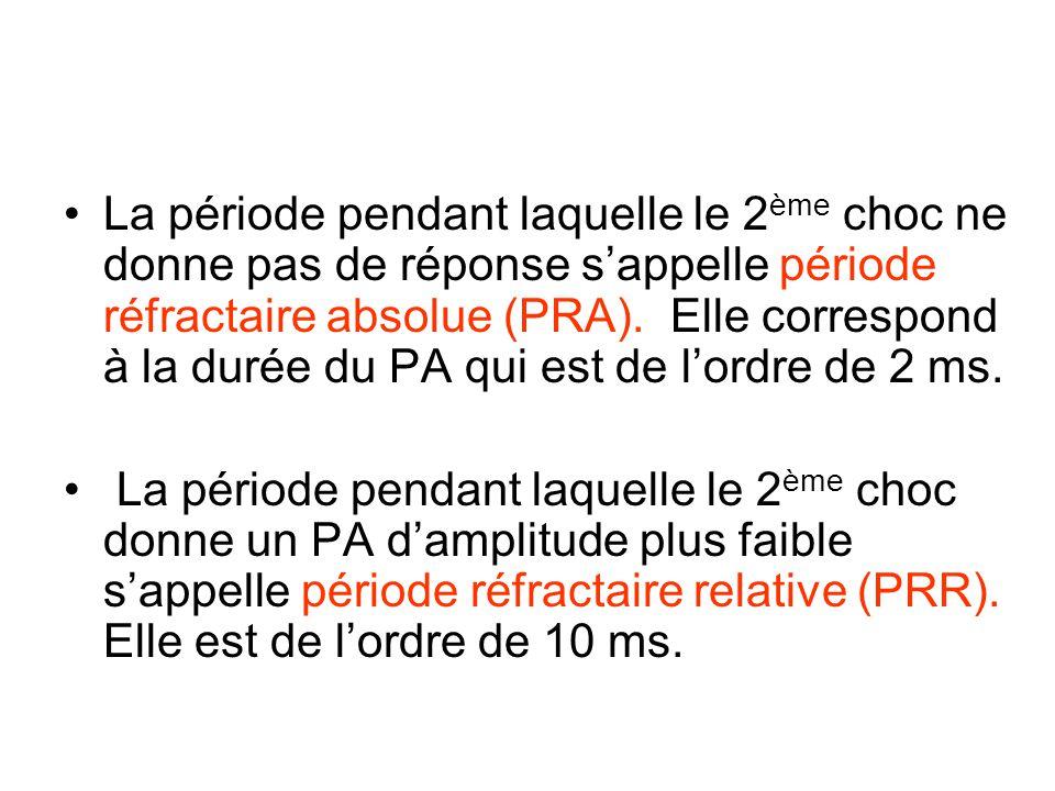 La période pendant laquelle le 2ème choc ne donne pas de réponse s'appelle période réfractaire absolue (PRA). Elle correspond à la durée du PA qui est de l'ordre de 2 ms.