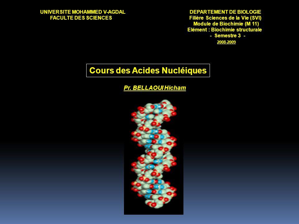 Cours des Acides Nucléiques