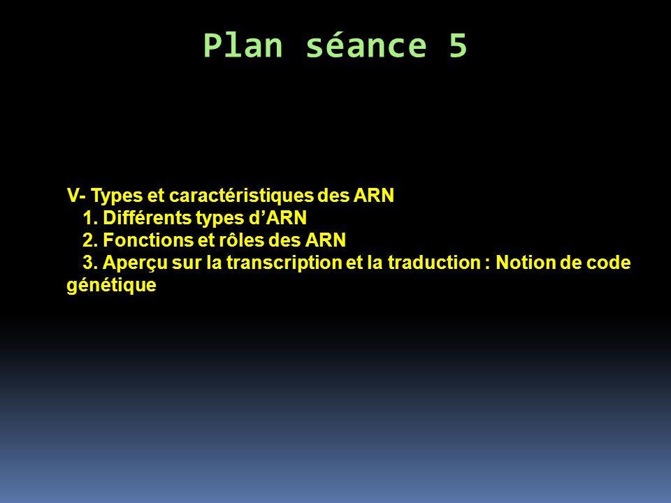 Plan séance 5 V- Types et caractéristiques des ARN