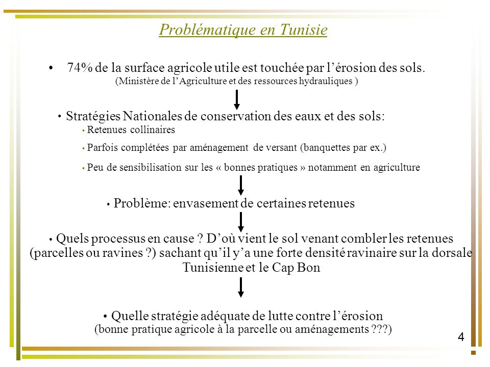 Problématique en Tunisie