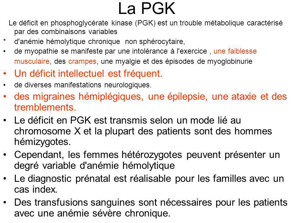La PGK Le déficit en phosphoglycérate kinase (PGK) est un trouble métabolique caractérisé par des combinaisons variables.