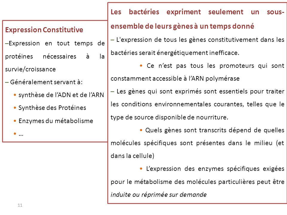 Expression Constitutive