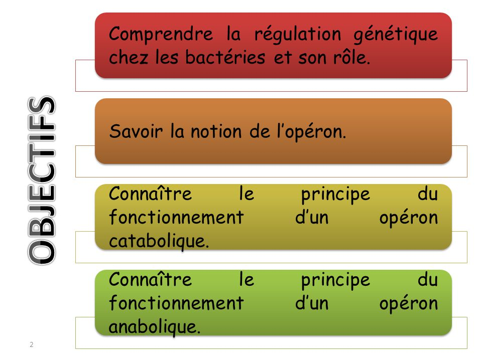 Comprendre la régulation génétique chez les bactéries et son rôle.