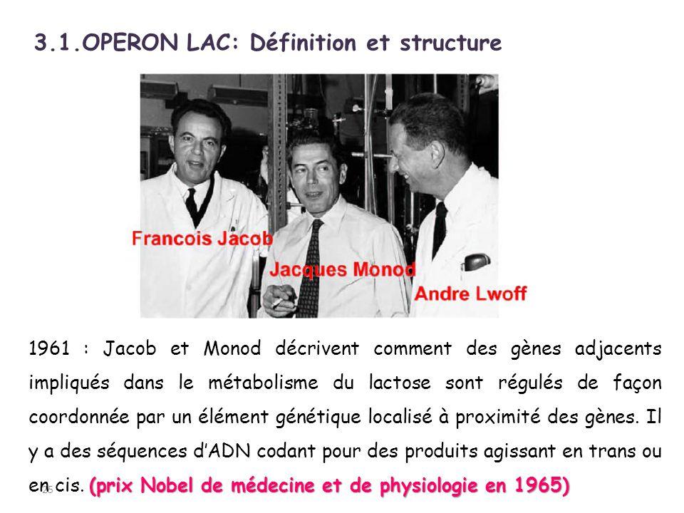 3.1.OPERON LAC: Définition et structure