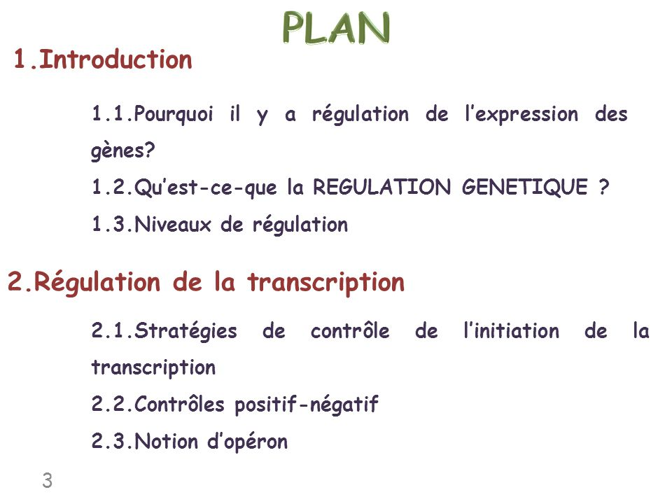 PLAN 1.Introduction 2.Régulation de la transcription