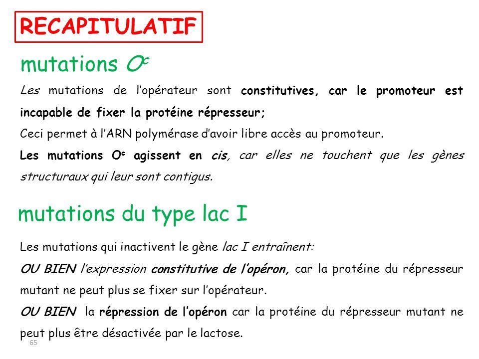 RECAPITULATIF mutations Oc mutations du type lac I