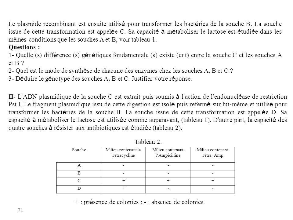 3- Déduire le génotype des souches A, B et C. Justifier votre réponse.