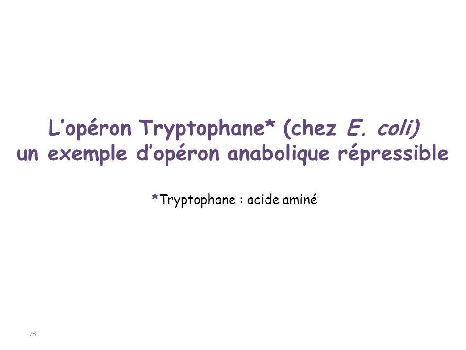 L'opéron Tryptophane* (chez E. coli)
