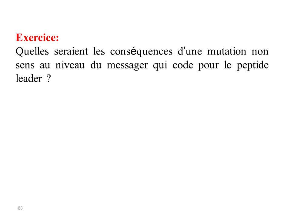 Exercice: Quelles seraient les conséquences d'une mutation non sens au niveau du messager qui code pour le peptide leader