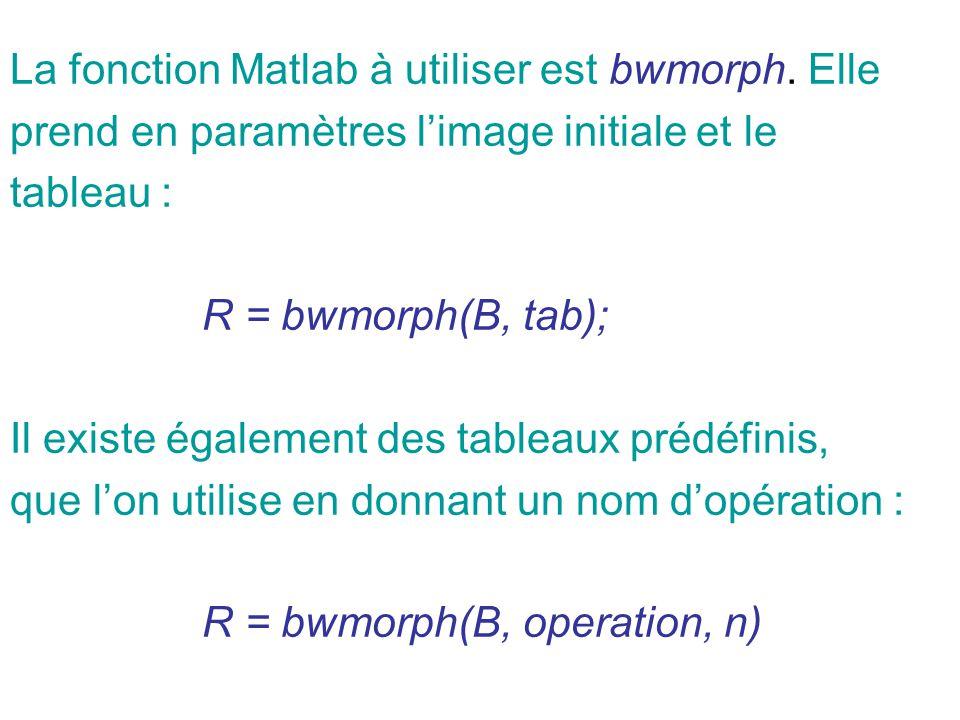 La fonction Matlab à utiliser est bwmorph. Elle