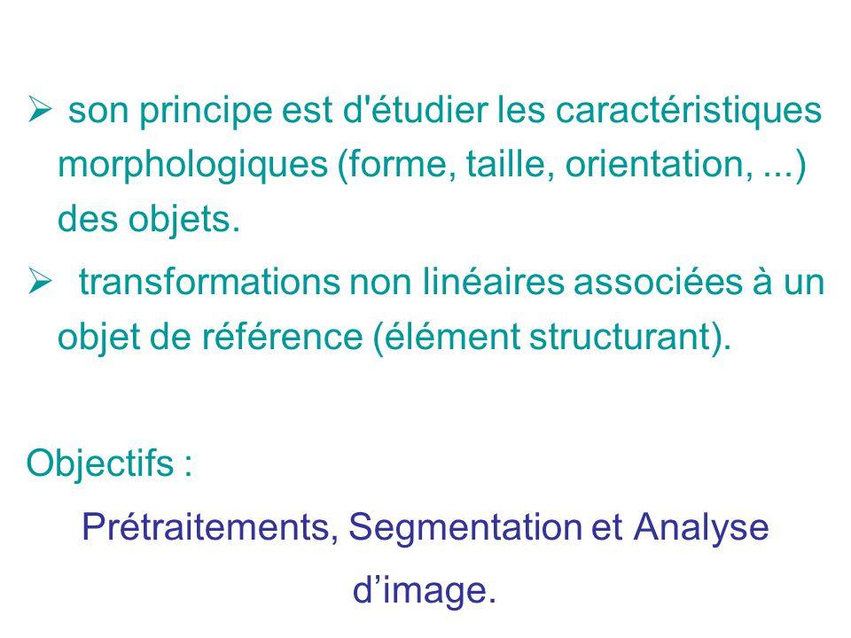 Prétraitements, Segmentation et Analyse