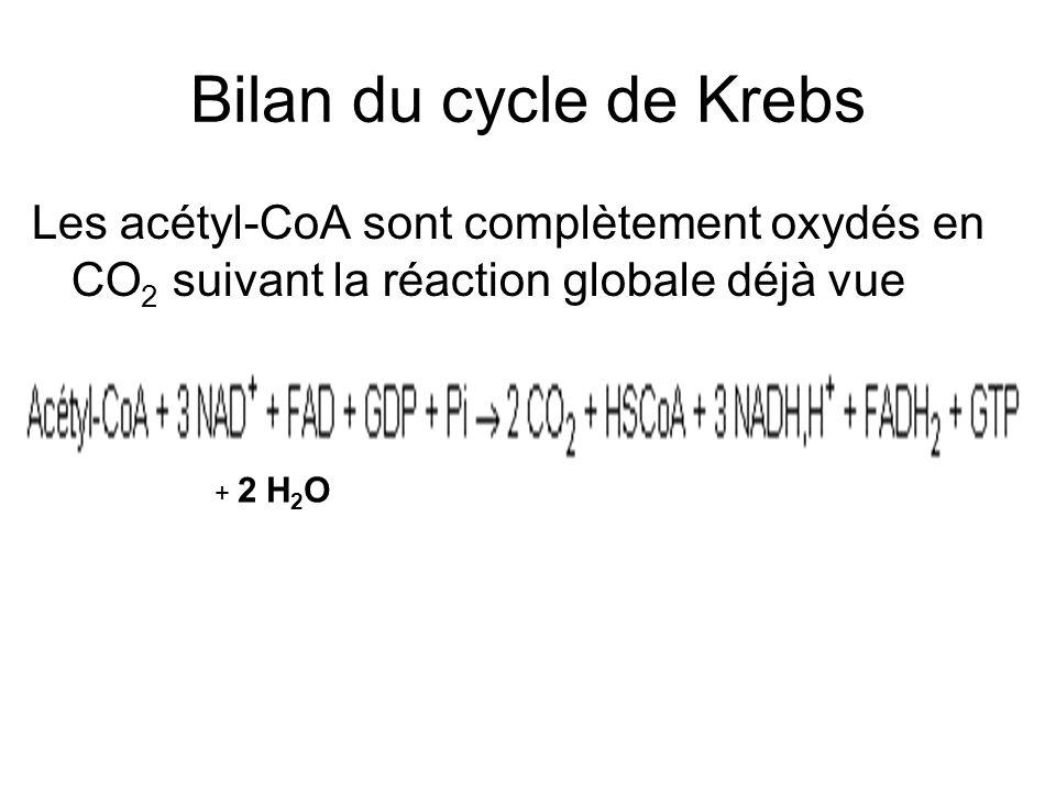 Bilan du cycle de Krebs Les acétyl-CoA sont complètement oxydés en CO2 suivant la réaction globale déjà vue