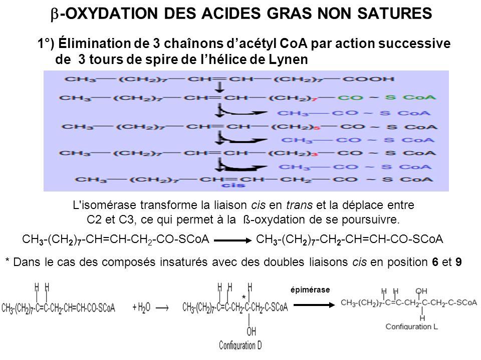 b-OXYDATION DES ACIDES GRAS NON SATURES