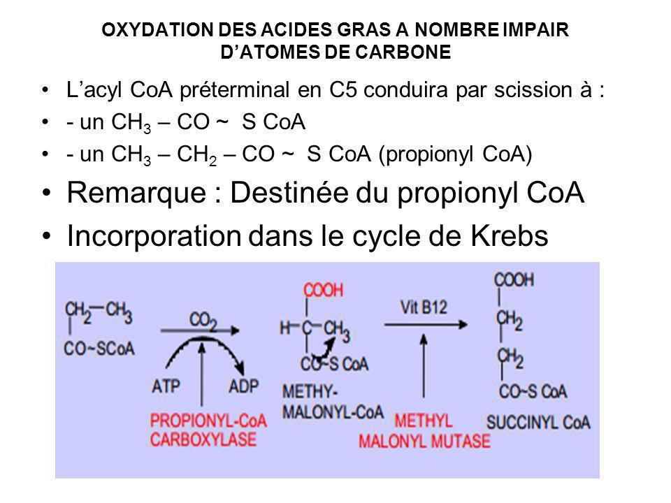 OXYDATION DES ACIDES GRAS A NOMBRE IMPAIR D'ATOMES DE CARBONE