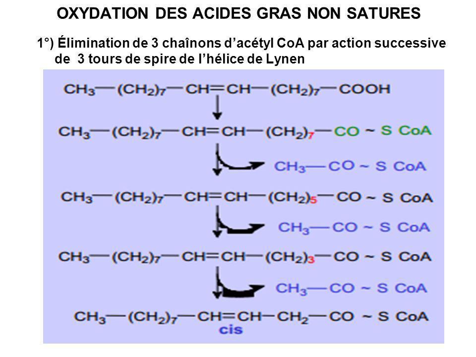 OXYDATION DES ACIDES GRAS NON SATURES