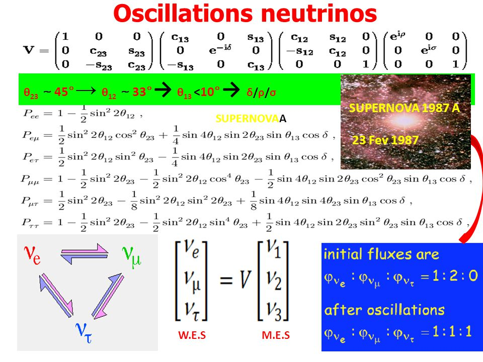 Oscillations neutrinos