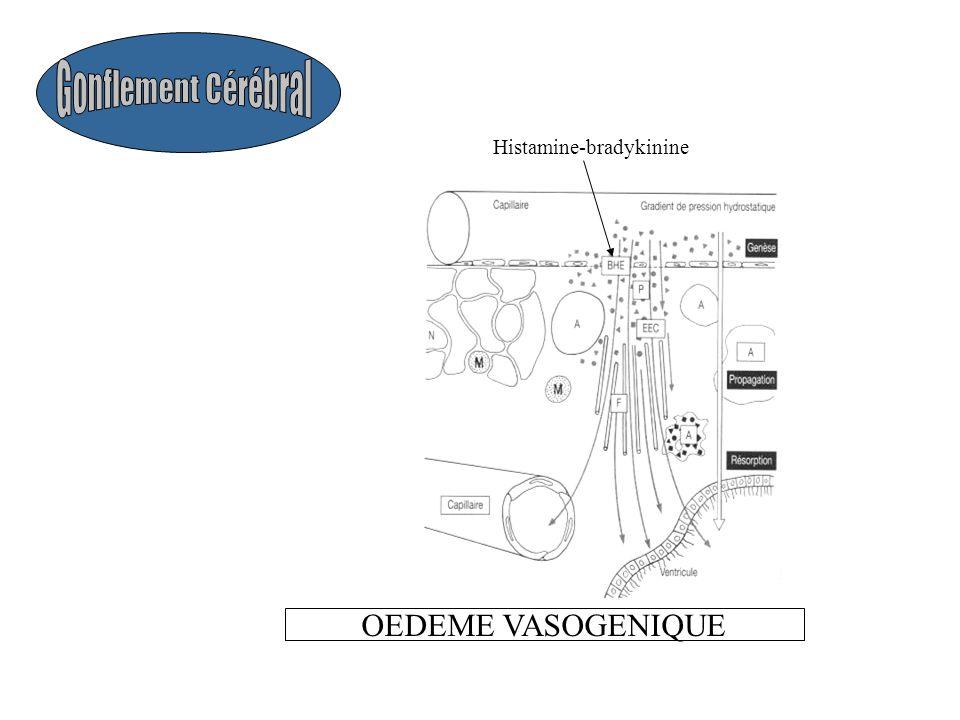 Gonflement Cérébral Histamine-bradykinine OEDEME VASOGENIQUE