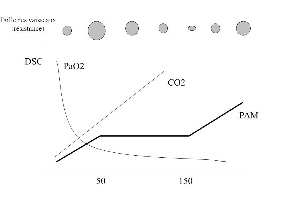 Taille des vaisseaux (résistance) DSC PaO2 CO2 PAM 50 150