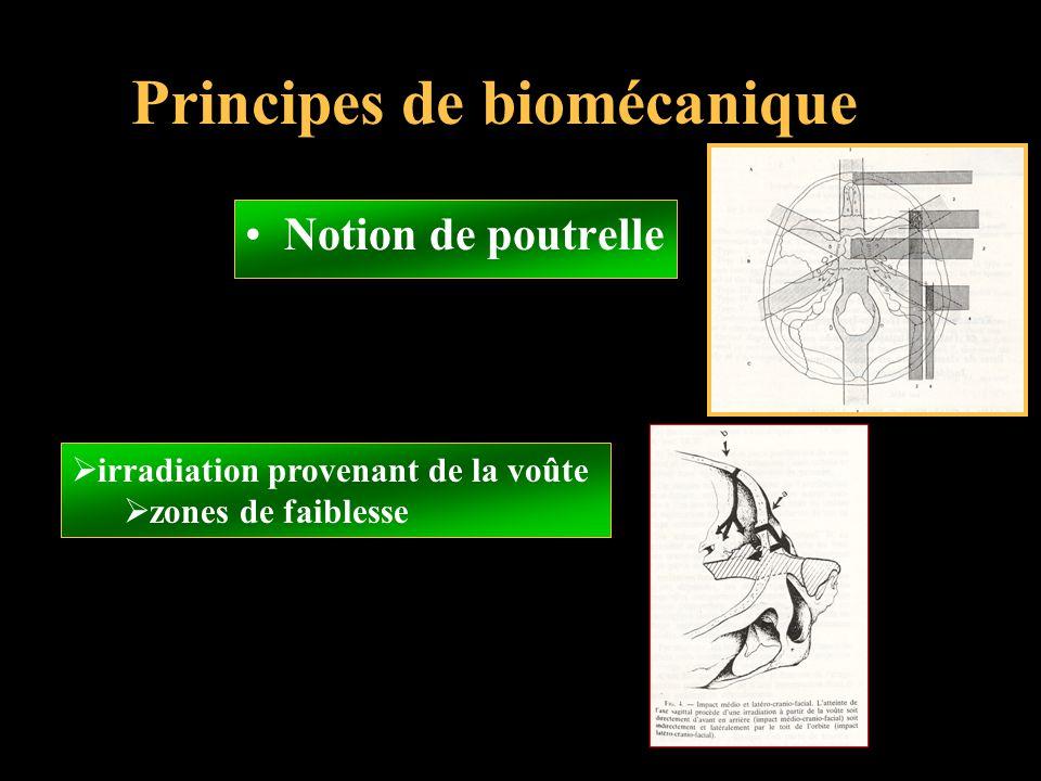 Principes de biomécanique