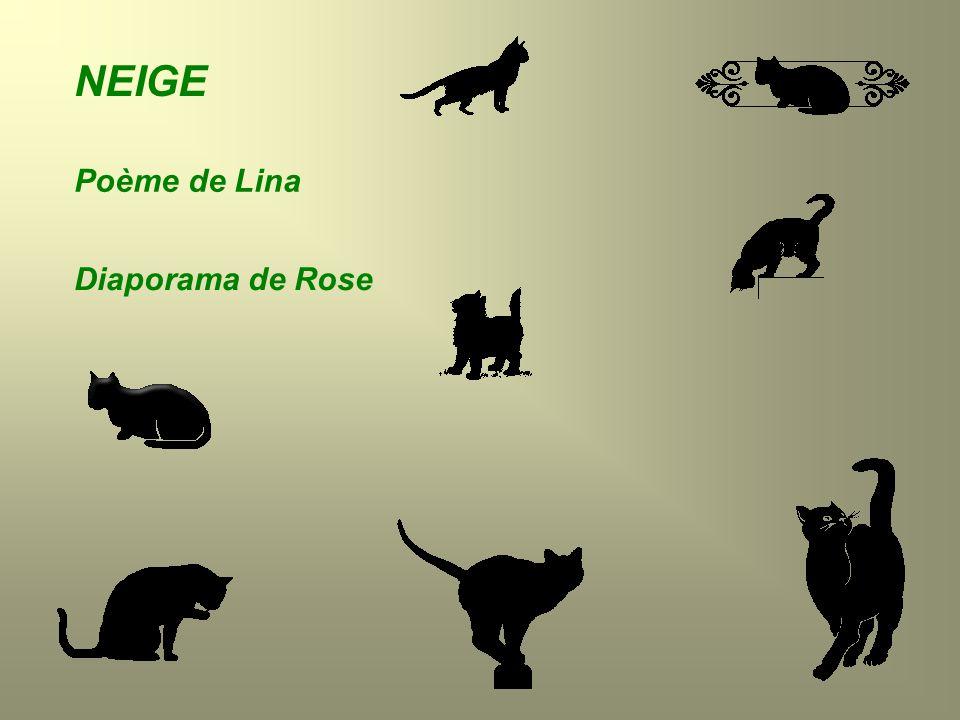 NEIGE Poème de Lina Diaporama de Rose