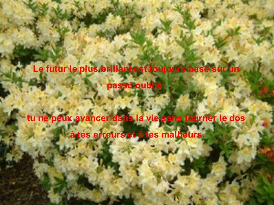 Le futur le plus brillant est toujours basé sur un passé oublié;