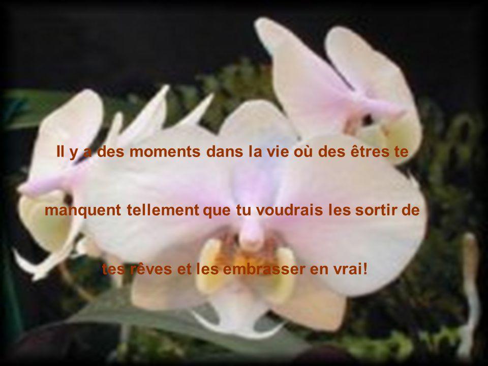 Il y a des moments dans la vie où des êtres te
