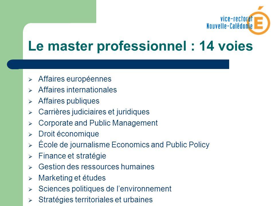 Le master professionnel : 14 voies