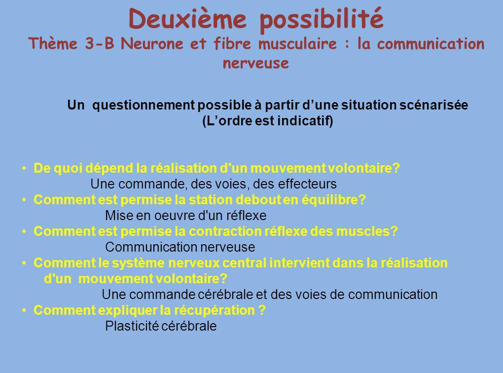 Deuxième possibilité Thème 3-B Neurone et fibre musculaire : la communication nerveuse. 01/04/2017.