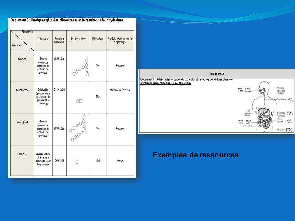 Exemples de ressources