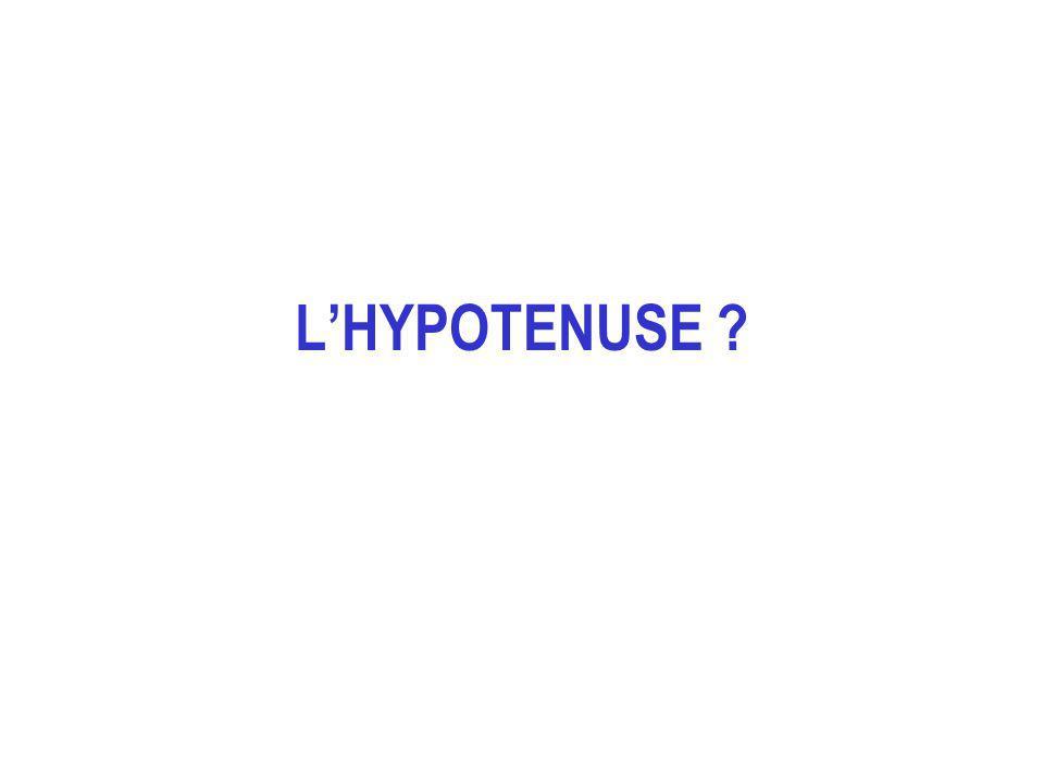 L'HYPOTENUSE