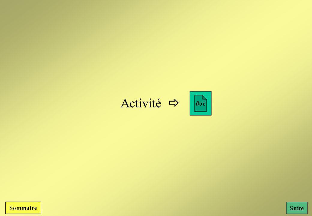 doc Activité  Sommaire Suite