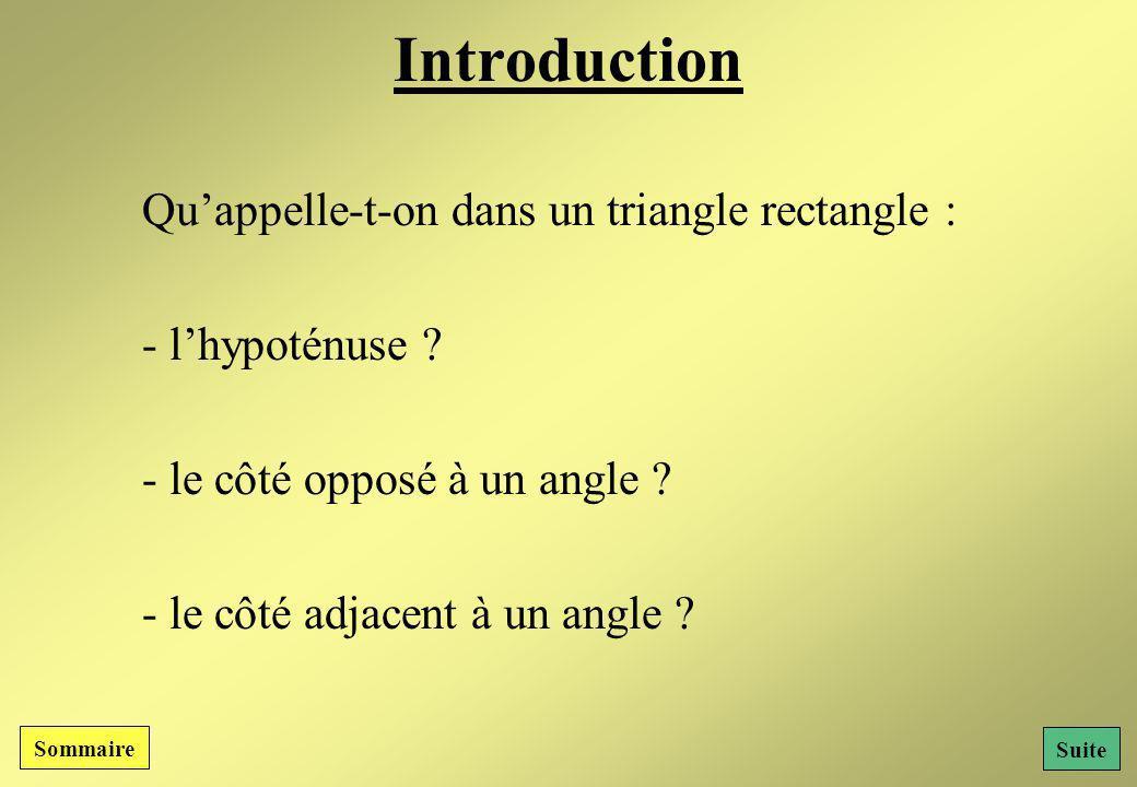 Introduction Qu'appelle-t-on dans un triangle rectangle :